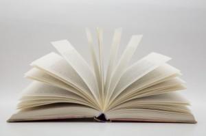 de aanhouder wint - schrijf een boek